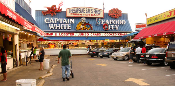 seafoodcity-1.jpg
