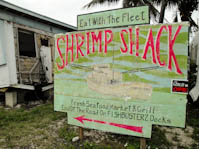 shrimpshacksign-4.jpg